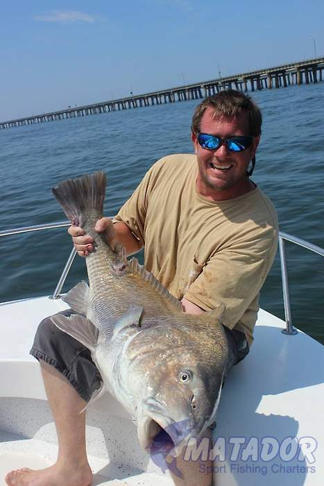 Black drum in the morning matador charters for Half day fishing trips